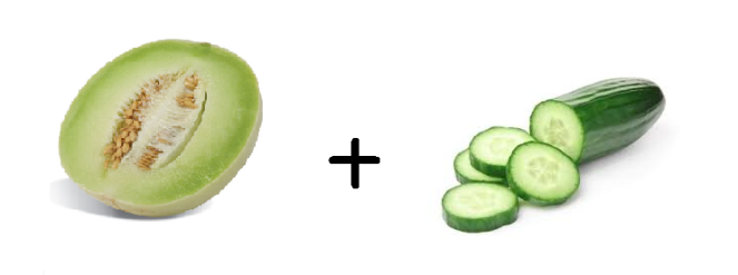 honeydew and cucumber.png